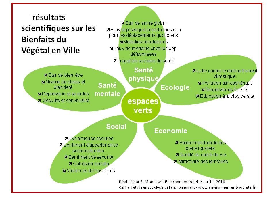 Les espaces verts dans la ville un enjeu vital pour ses for Importance des espaces verts